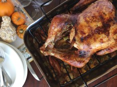 Spicy Ginger Roast Turkey